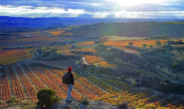 Destinatiile vinurilor lugera travel turism