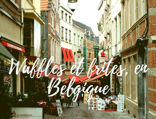 Lugerac around the World: Waffles et frites, en Belgique