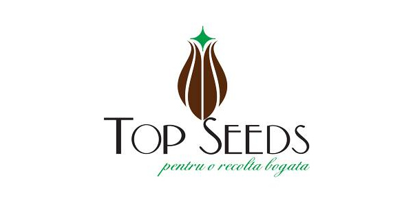 TopSeeds